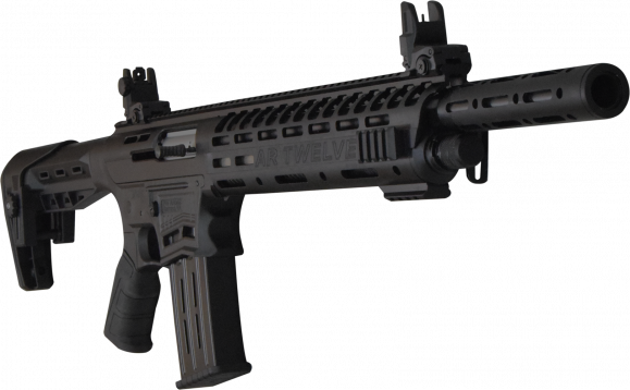 PW Arms AR12 12GA AR STYLE 20